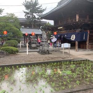 甲斐国住吉神社夏季例祭へ参陣致し候の画像