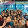 第95回日本学生選手権水泳競技大会への意気込みの画像