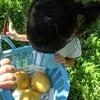 0歳から始めるおむつはずし講座〜四国ツアー。の画像