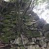 八幡山城に行ってきましたの画像