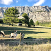プロヴァンスは山も素敵「サントヴィクトワール」の画像