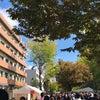 学園祭に行ってきました。の画像