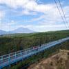 「三島スカイウォークに行ってきました」by suzukyoの画像