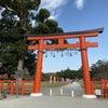 秋の京都、ありがたーいご利益とプチ講座の画像