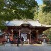 ほっこり、伊豆山神社。の画像