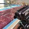 水中撮影会!の画像