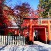 紅葉@多田神社(兵庫県川西市)の画像