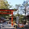 京都紅葉めぐり2019 その2 城南宮・東寺の画像
