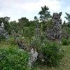 宮古島のパワースポットへの画像