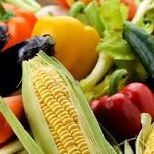 食品選びのポイントの画像