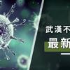 【2月7日更新】台湾の武漢肺炎 (新型コロナウィルス)の影響と現在の状況について。の画像