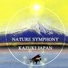 スピリチュアルアート Spiritual Art ピアノの絵 Nature Symphonyの画像