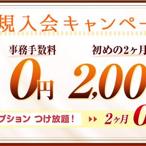 ★4月新規入会キャンペーン★ の画像