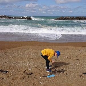 海~の画像