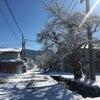 スキー日和の画像