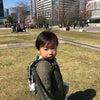 みなとみらいの桜で気分転換をしてきました。~平川将のページ~の画像