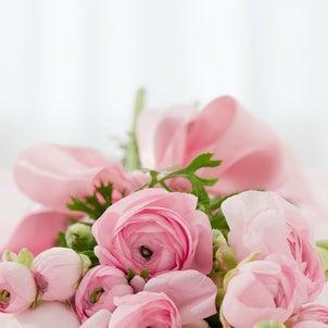 売れ残りのお花はどうなるの?の画像