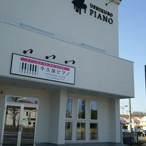 桜満開 新店舗のお知らせの画像