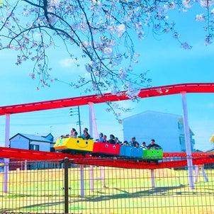 桜、晴天、そして神野公園の画像