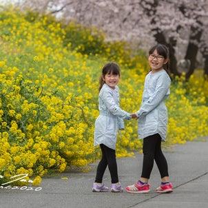 2020.4.2 みあちゃん&じゅあちゃんの画像