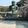 今日の鎌倉大仏、、、。の画像