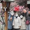 梅の花見 けあらーず上新庄事業所の画像