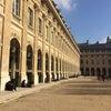 辛すぎた7週目のおうち生活と、パリ(エア)散歩『パレロワイヤル庭園』の画像