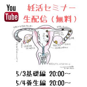ネットで妊活セミナー|youtube無料配信いたしますの画像