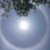 太陽のまわりにハロが出現中!の画像