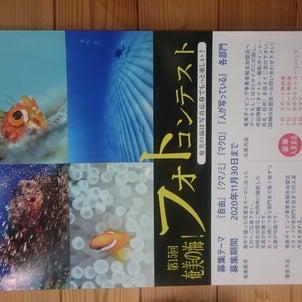 第15回 奄美の海!フォトコンテストの画像