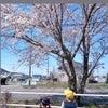 ♡♡の画像