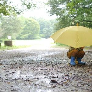 子どもの感性を育む♪とっておきの雨の日の過ごし方の画像