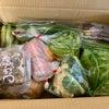野菜の福袋の画像