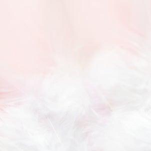 ◆至福のつぶやき♡の画像