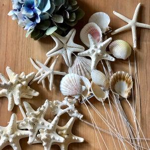 貝殻やヒトデのワイヤリングの画像