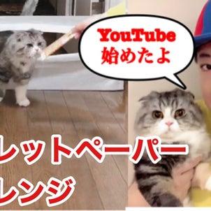 大野社長が飼い猫とYouTube始めましたの画像
