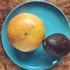 アボカド&グレープフルーツの画像