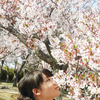 米子市「湊山公園」♪の画像