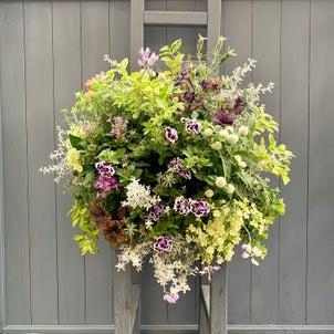 夏の多肉植物バスケットとおうち園芸の画像