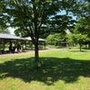 芝生の広場 ええとこあるやん!の画像