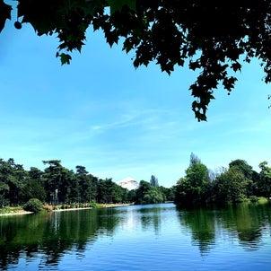 パリさんぽ♪リアル白鳥の湖とドンキの画像
