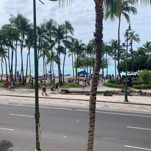 今更ながらハワイ旅行振り返りますの画像