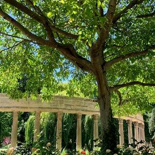 パリ17区のモンソー公園散策♪おすすめです♡の画像