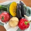 夏野菜でシンプルクッキングの画像