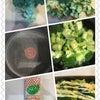 マヨブロッコリーのオーブン焼きの画像