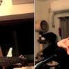 【テレワーク演奏】異邦人 円山天使×広島綾子の画像