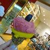 銀座 Shopping &Venchi ☆ジェラートの画像