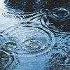 梅雨と梅酒の画像