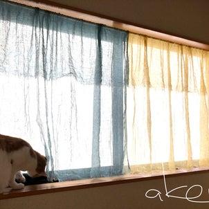 空くんが興味をもった 手作りのリネンカーテンの画像