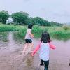 川遊びとシロツメグサの香りの画像